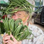 Meredith Bell with garlic scapes